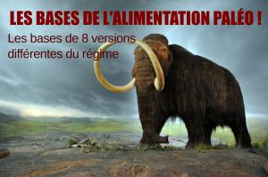 Le régime paléolithique : 1/8 les bases